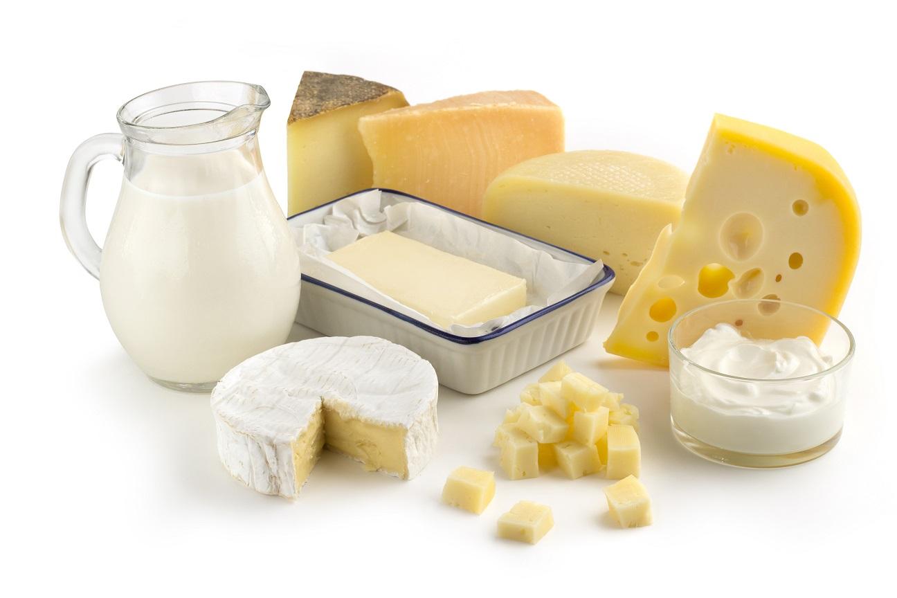 Procesarea laptelui